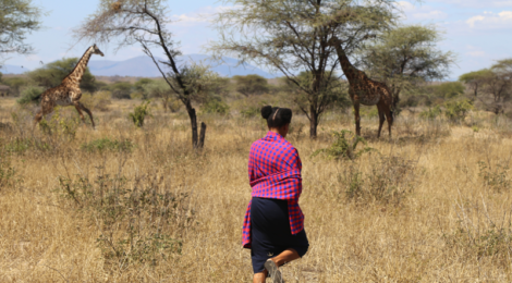 Vintage Safari Romance at Ruaha National Park