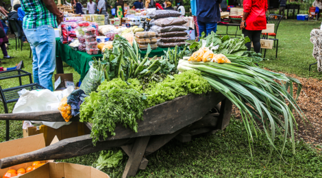 """Saturday Market"" at Rivertrees Country Inn, Arusha."